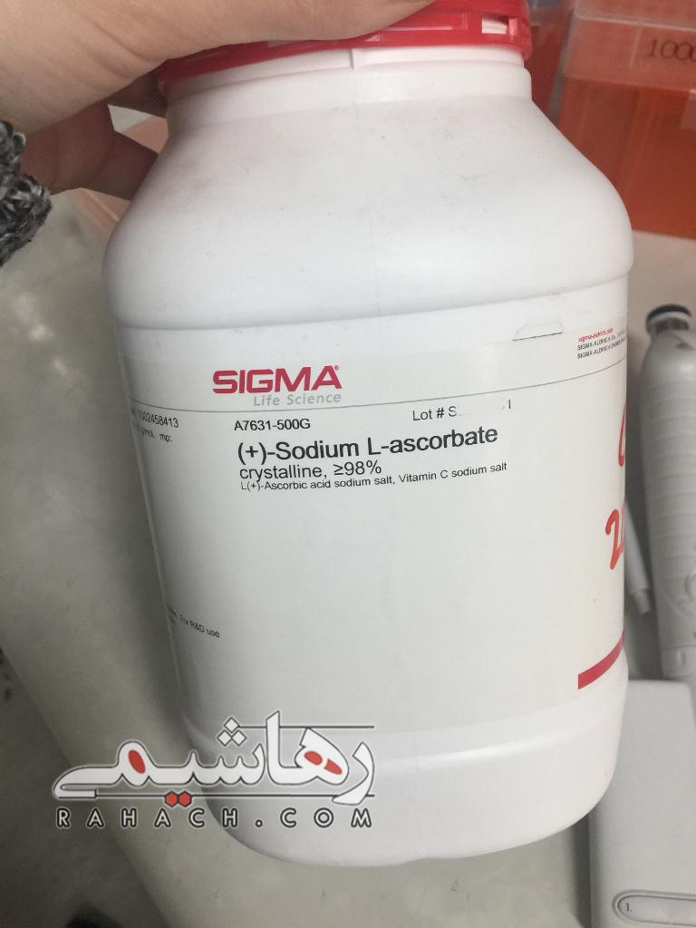 Sodium L-ascorbate | SIGMA A7631|ویتامین C سدیم سالت