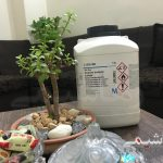 Sodium dodecyl sulfate | سدیم دودسیل سولفات | مرک ۸۱۷۰۳۴|رهاشیمی